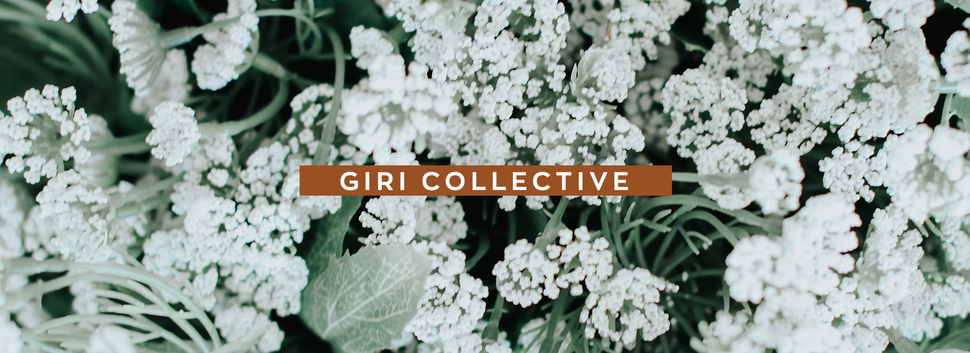 Girl collective banner